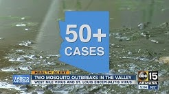 Two mosquito-born outbreaks in the downtown Phoenix