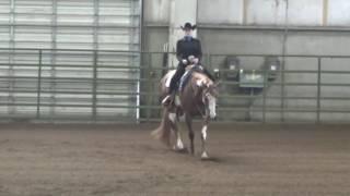 Ellie Becker Horsemanship video 3