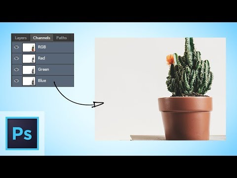 Using Channels To Make Quick Mask Selections, Photoshop Tutorial