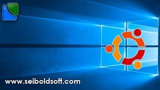 Windows 10, Windows 8.1, Linux unter UEFI installieren