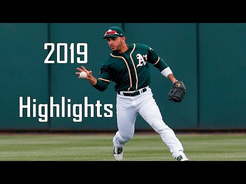 Ramón Laureano - 2019 FULL Highlights