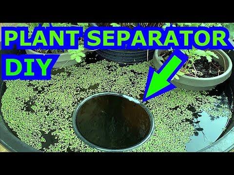 Floating Plant Separator   DIY Aquarium Feeder Ring
