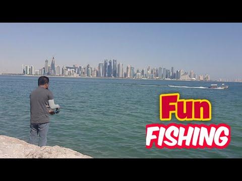 Rock Fishing / Al Bandar Doha