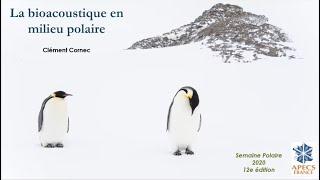 SP2020Aut - #2.3 - Clément Cornec - La bioacoustique en milieu polaire