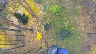 Удаление аварийного дерева, валка по частям(, 2013-03-12T04:41:13.000Z)