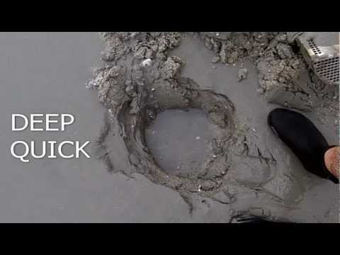 T-Rex Beach Scoop Tested By Metaldetecting.com - DeMarco Detector Sales