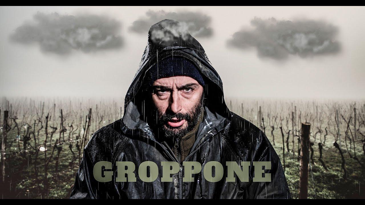 GROPPONE