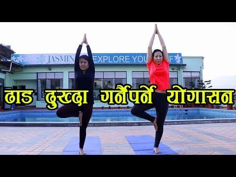 ढाड दुख्दा गर्नैपर्ने योगासन || Yoga Positions for Back Pain Relief
