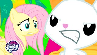 My Little Pony | Fluttershy's and Angel Bunny's Relationship (She Talks to Angel) | MLP: FiM