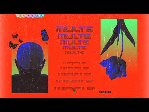Keed - Multe (Audio)