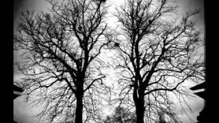 Draconian - Morphine Cloud (with Lyrics)