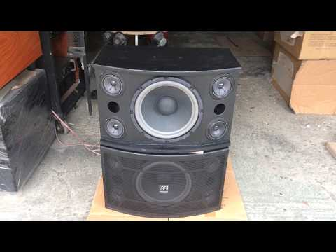 Loa karaoke Martin bass 25 ( dựng ) lh: 01692540875
