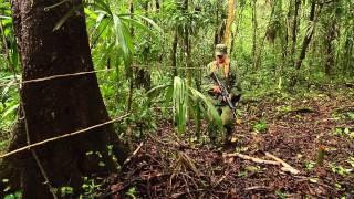 Militairen leren vechten in genadeloze jungle van Belize