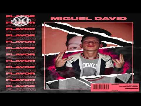 miguel-david---flavor-(audio)