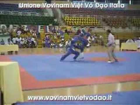 Vovinam Knockouts