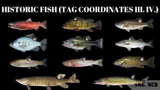 Fishing Planet - New Missions, Historic Fish Event (FISH TAG COORDINATES III. IV.)