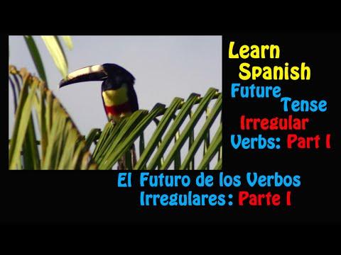 Learn Spanish-Future Tense Irregular Verbs Part I
