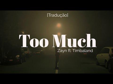 ZAYN - Too Much Ft. Timbaland [Legendado/Tradução]