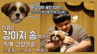 강아지소리를 따라해보자 (틱톡 고양이송 패러디) | 小潘潘 x 小峰峰 - 學貓叫 (一起唱着小狗的歌吧)