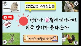 사주77강 : 음양오행 PPT심화론/ 丙일간의 운용