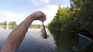 Весёлая рыбалка!