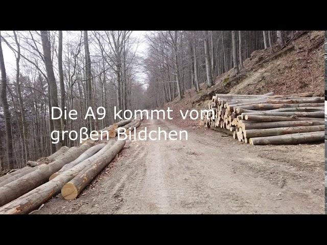(Film 23)  Ein vergessener Weg im Sorpetal