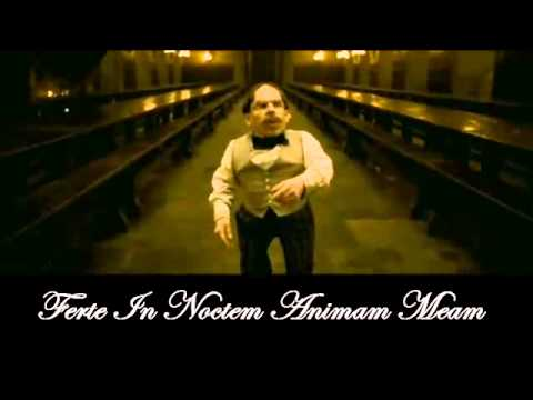 Harry Potter ve Melez Prens-İn Noctem (Lycris)