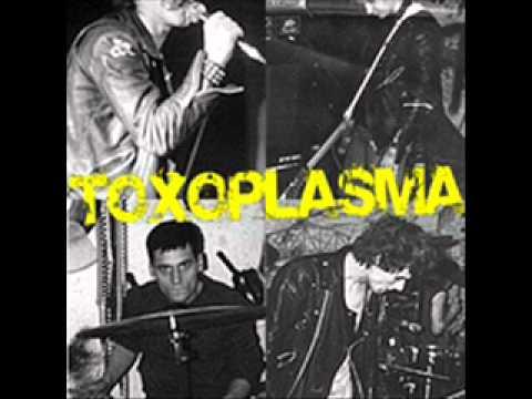 Toxoplasma - Razzia