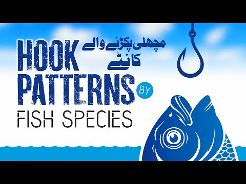 Hook Patterns By Fish Species