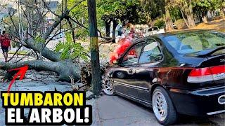 ME CHOCARON EL CIVIC CONTRA UN ÁRBOL.. | ManuelRivera11