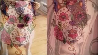 Значение тату бультерьер - фото готовых татуировок