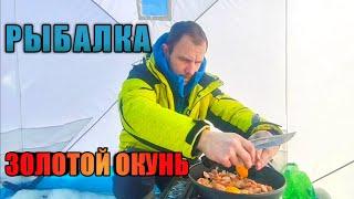Зимняя Рыбалка Золотой Окунь заслужил свободу Отлично провели время на зимней рыбалке