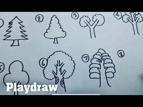 สอนวาดต้นไม้หลายสไตล์ง่ายๆ by Playdraw สอนวาด