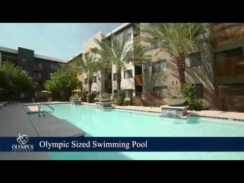 Cactus Forty 2 Apartments In Phoenix Az Forrent Com Youtube