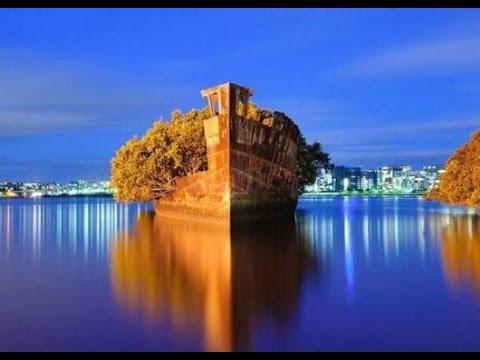 Amazing Floating Forest In Sydney HD 2014 HD