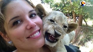 Woman Returns To South Africa To Save Her Favorite Lion | The Dodo