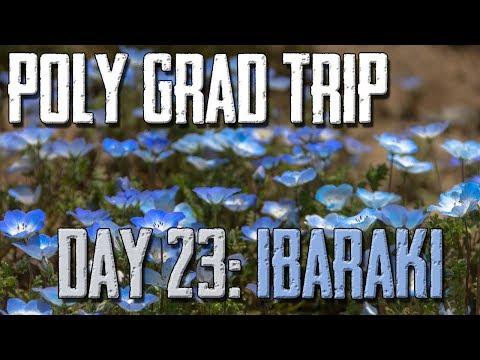 Polytechnic Graduation Trip: Hitachi Seaside Park, Land of Blues
