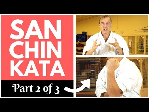 SANCHIN KATA SECRETS (2/3): Hips, Elbow & Scapula — Jesse Enkamp