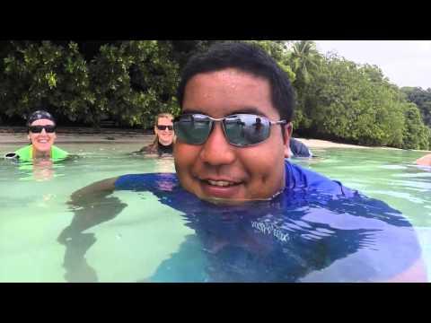 Aquatic Adventures Palau 2015