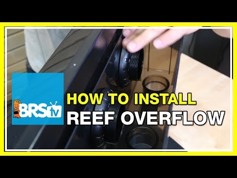 How to install the Synergy Reef Shadow overflow | BRStv How-To