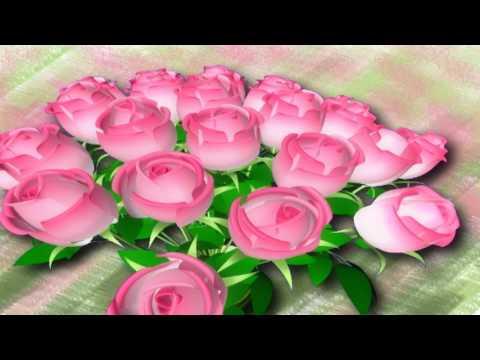 Каталог роз из Эквадора с фото Сорта эквадорских роз