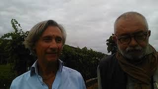 Wine Experience ad Albenga: tutor wine EXP