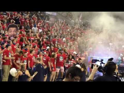 Kraziness in the Kennel 2016