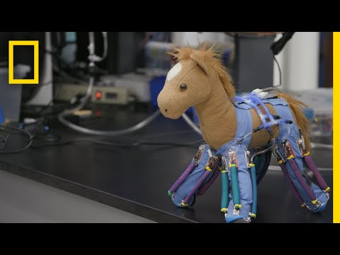 How Ordinary Objects Can Be Turned Into Robots
