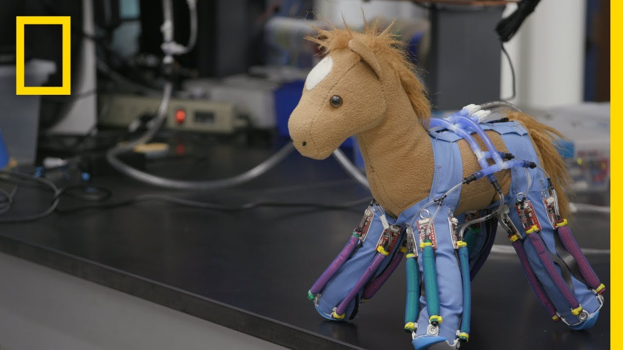 How Ordinary Objects Can Be Turned Into Robots | National Geographic