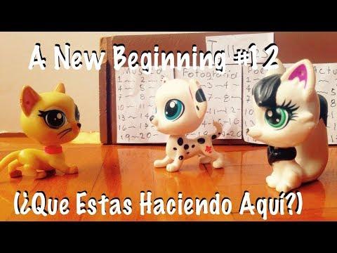 A New Beginning #12 (Qué estás haciendo aquí?)