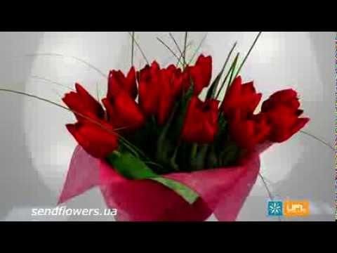 Букет Красные тюльпаны. Букет на 14 февраля - SendFlowers.ua
