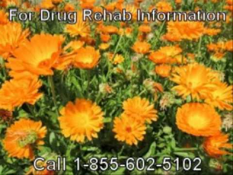 Faith Based Calvary Drug Rehab In Jonesboro