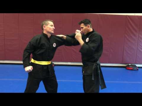 Kung Fu (Gung Fu): Inside Snake Block to Capture/Pull-Strike