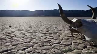 Unit 123 Tourists Flock to Death Valley Despite Insane Summer Temperatures
